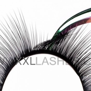 Camelia Mink Lashes, Innovation for Russian Volume 3D-6D