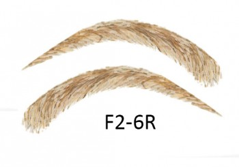 Artificial, semi-permanent, stick-on eyebrows made of 100% natural hair, handmade, F2-6R