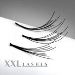 A selection of 1200 Flare Lashes in a box   C-Curl   6D-8D